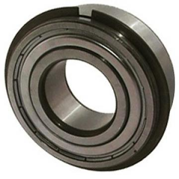 NTN 6005ZNR Single Row Ball Bearings