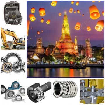 INA F554185.01-NUP-T Ball Bearings